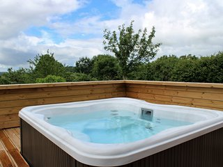 Nyland Lodge, Strawberryfield Park - A starlight roof and sunken hot tub create