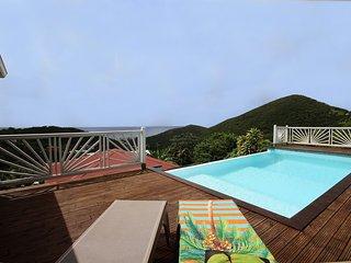 Villa Palmier Rouge: piscine vue mer Sainte-Luce