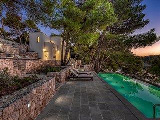 Modern Villa Luce Primosten, with a Pool