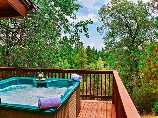 San Jacinto Lodge: Hot Tub, Walk to Town, Views, NEW LISTING