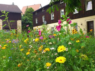 Gorgeous Apartment in Weissig Saxony with garden seatin