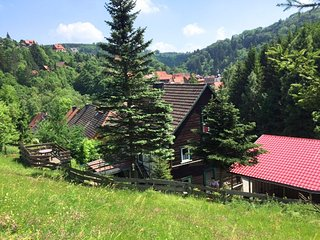 Big HolidayHome in Rübeland  With Terrace