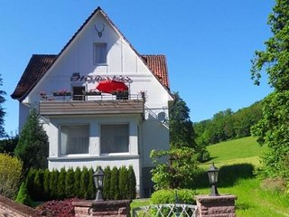 Large holiday home by Bad Pyrmont in Weser Uplands - balcony, terrace, garden