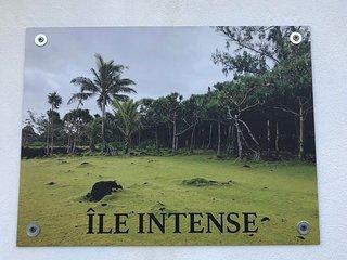 Maisonnette rénovée, vue mer 'Ile Intense',Clim,Wifi, parking, Réunion