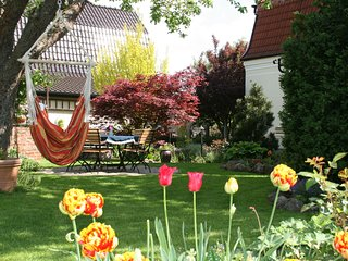 Comfortable apartment in Nordhausen in the Harz with pellet stove and use of the