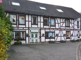 Spacious group home close to Winterberg and Willingen with private garden