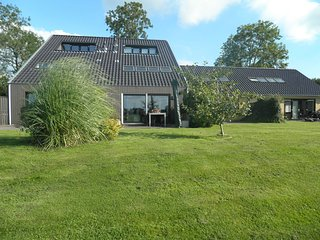 Luxury Holiday Home in Langweer by the Forest