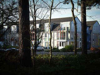 Well-kept apartment, a stone's throw from the sea, on Texel