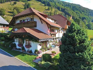 Cosy apartment in the Black Forest, just outside Todtnau