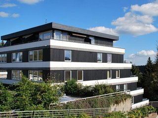 Modern and cosy flat near Winterberg's town centre and the ski resort
