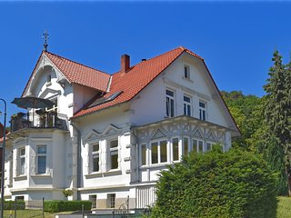 Bright ground floor apartment in Blankenburg in the Harz Mountains with wood sto