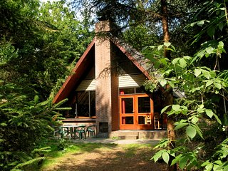 Detached wooden bungalow with microwave surrounded by nature