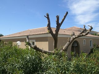 Spacious house, 100m from the beach, swimming pool.