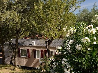 Cozy chalet with terrace in a wooded area close to Agde