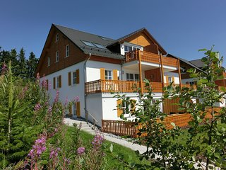 Apartment near Winterberg with terrace, garden, quiet location and a lovely view