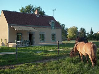 Fine holiday home in the surroundings of Vitry-aux-Loges near large swimming lak