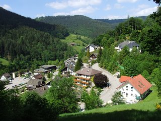 Beautiful apartment in the Black Forest with south-facing balcony and private en