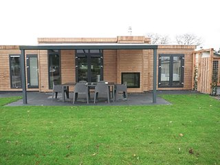 Modern chalet with a decorative fireplace near the Veluwe