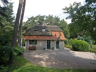 Cosy Holiday Home in Beerze with Terrace