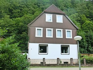 Spacious group house in the Harz region with a fenced garden