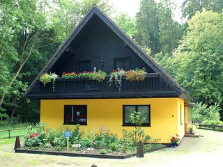 Vibrant Cottage near Ski Area in Steina