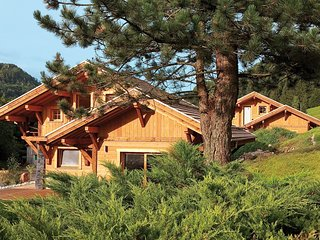 Beautiful, spacious, 6-8 person chalet with sauna in La Bresse