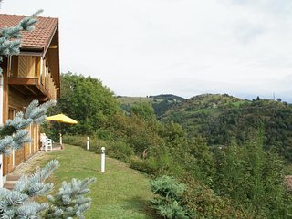 Spacious chalet in La Bresse 3km from slope