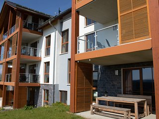 Luxurious apartment in Winterberg-Neuastenberg with private sauna