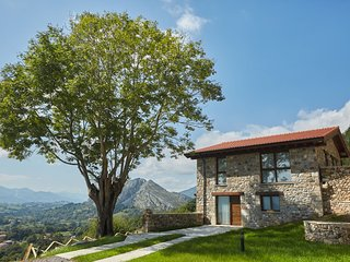 Beautiful apartment, rural location with stunning views of the Picos de Europa