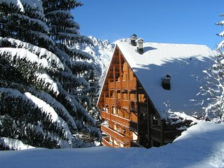 Apartment on the slopes in the big ski area Grandes Rousses