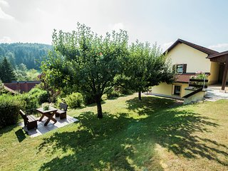 Spacious Apartment in Plankenstein near Forest