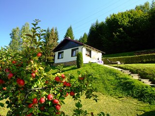 Cozy Cottage in Langenbach Thuringia near Lake