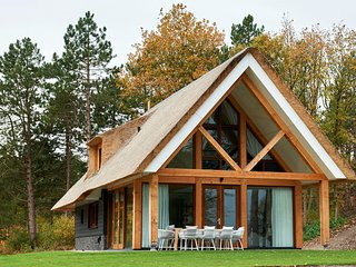 Beautiful designed sauna villa, in national park De Hondsrug