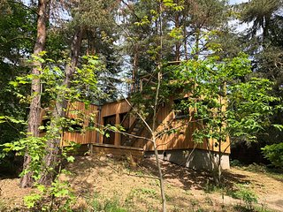 New wooden chalet in the woods with roof terrace, at Colmar and on the wine rout
