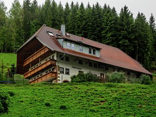 Comfortable apartment with balcony in a quiet location in the Black Forest