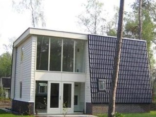 Modern villa with deco fireplace and dishwasher in De Veluwe
