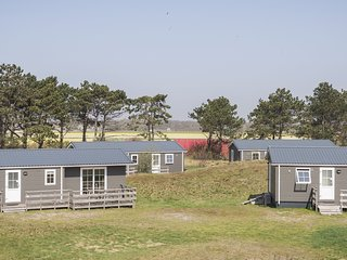 Comfortable chalet with dishwasher, in the Texel dune areal
