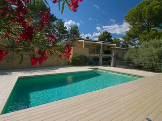 Luxury Villa with Private Pool in Figanieres Provence