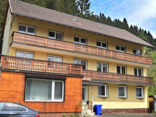 Quiet apartment in Wildemann in the Upper Harz with balcony