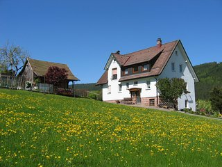 Cozy Apartment in Vorderer Tonbach with Parking