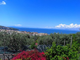 Boutique Mansion in Sorrento with picturesque view