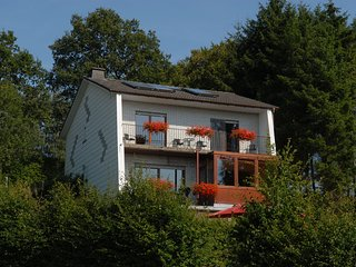 Large house with all you need, including a sauna, nice garden and panorama!