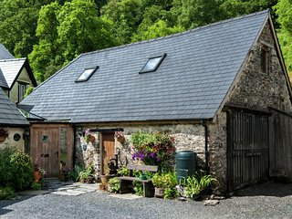 Rustic Holiday home in Llanwrtyd Wells with Patio