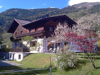Spacious Holiday Home in Dorfgastein with Mountain View
