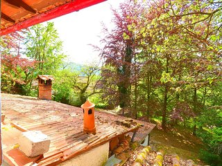 Spacious Holiday Home in Migliorini with Pool