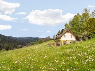 Welcoming Chalet near a Ski Area in Sankt Andra