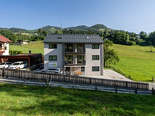 Luxurious Penthouse near Sankt Georgen with private terrace
