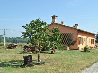 Cozy Holiday Home in Tuscany Italy with Farm view