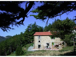 Vintage Holiday Home in Marradi Tuscany with Pool