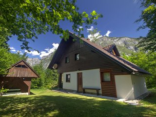 Apartment 300 m from Lake Bohinj at the edge of Triglav national park